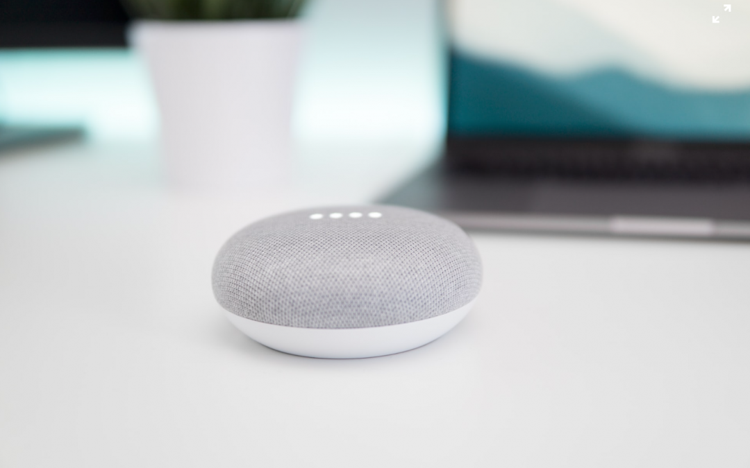 prevent your smart speakers from recording you